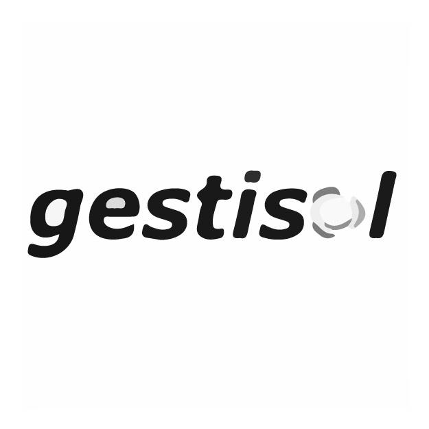 LOGO GESTISOL 300X300-12